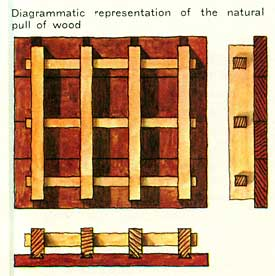 Diagrammatic representation of the natural pull of wood