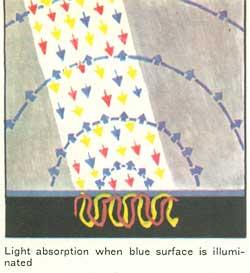 Light- absorption when blue surface is illumi�nated