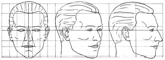 Diagram of human head