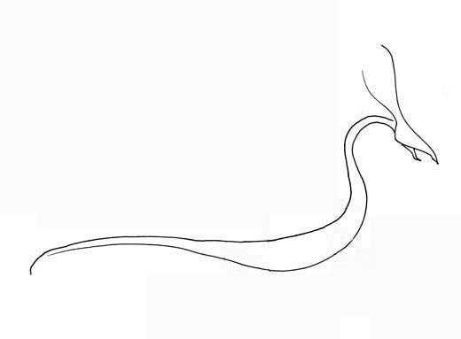 How to Draw a Dragon Perfectdragon4-5
