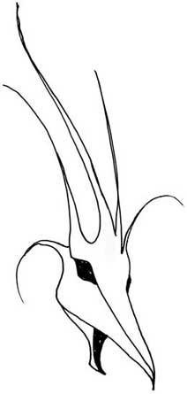 How to Draw a Dragon Slanthead7